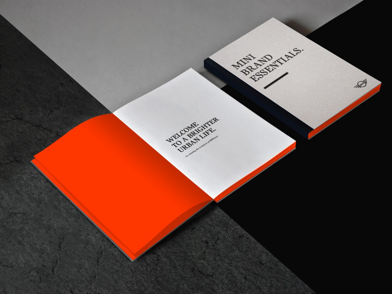 marcela grupp | art & design direction MINI Brand Essentials Book